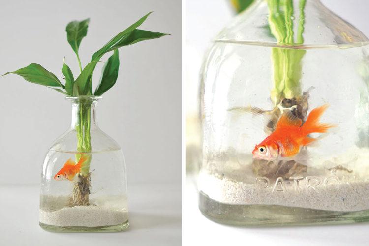 10 DIY Ideas Reusing Old Glass Bottles | Interior Design Ideas