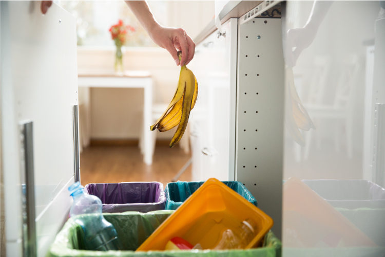 11 Ingenious Ways To Reuse Kitchen Waste on kitchen recycling ideas, packaging ideas, kitchen tool ideas, kitchen cake ideas, kitchen trash can ideas,