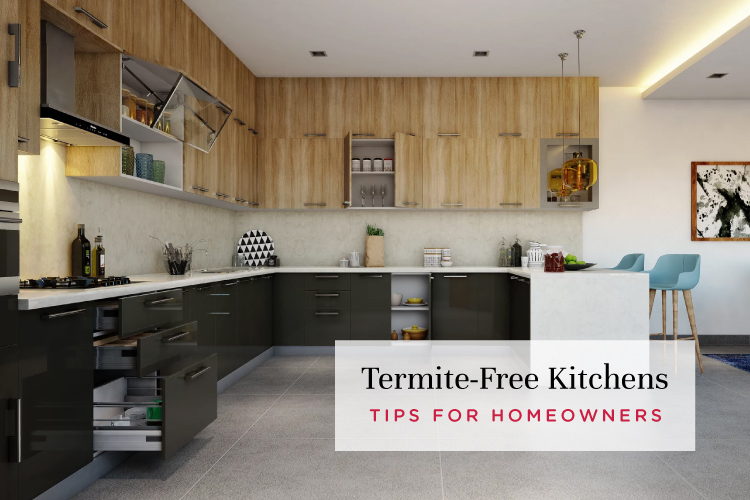 8 Tips To Ensure Your Kitchen is Termite-Free