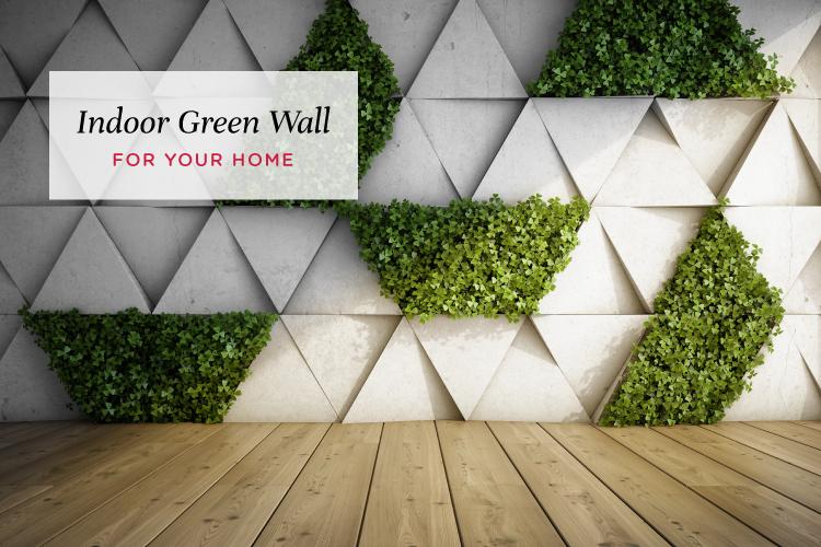 How to Build a Vertical Garden Indoors