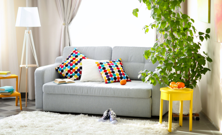 6 vastu decorative items to pretty up your home - Decorative things for living room ...